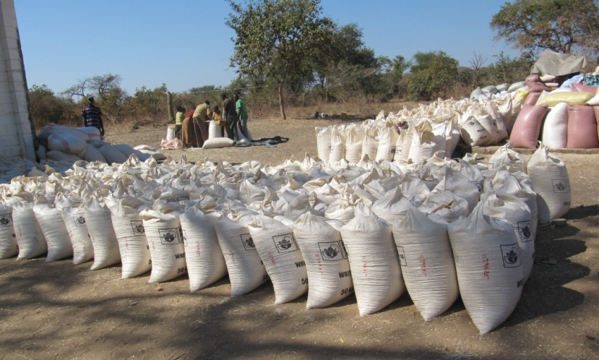 Zambia: FRA Gets K500m For Crop Purchasing