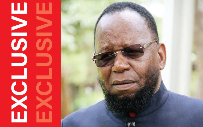 Zimbabwe: Besieged Dokora Chickens Out Of Hotly Contested Zanu PF Chair Race