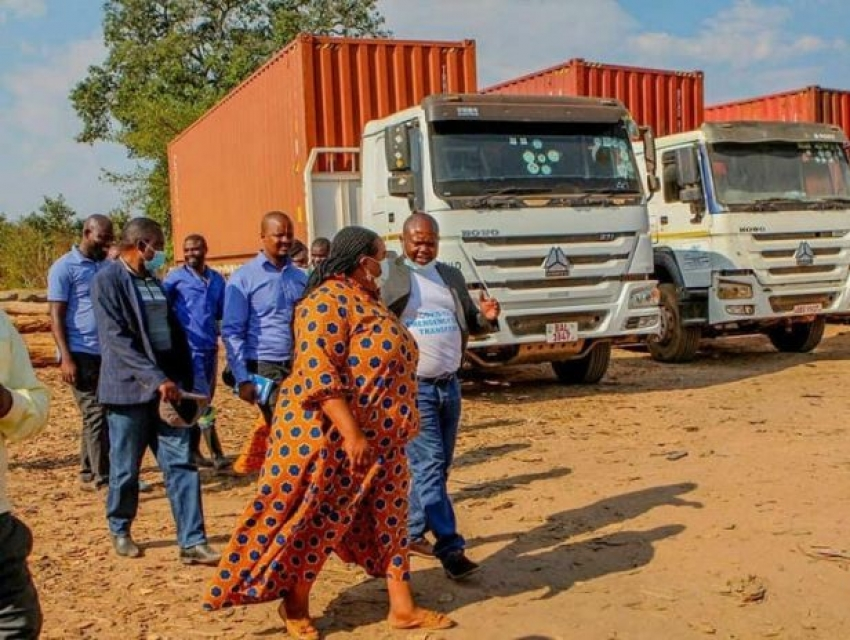 Zambia: Mukula Scam unearthed in Chipili