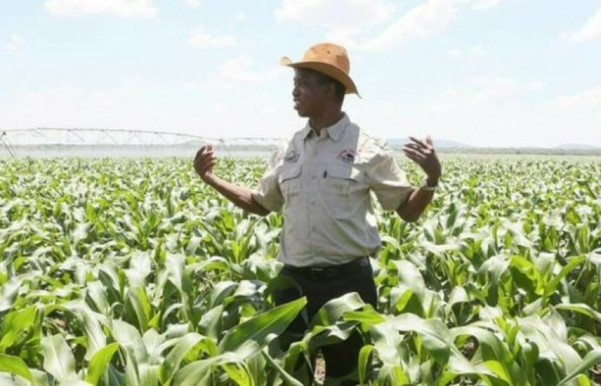 Zambian Govt To Revisit Agro-Taxes